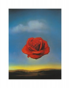 dali-rose