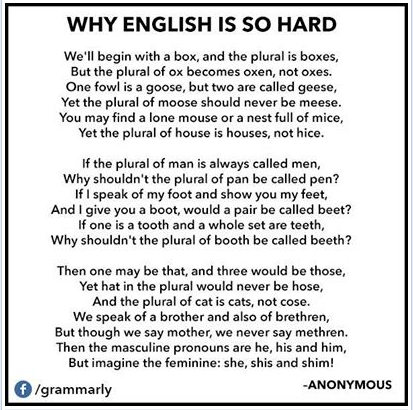 grammarly english hard linguistics